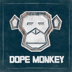 Robin Schulz feat James Blunt - OK (Dope Monkey Bootleg)
